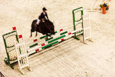 Horse and rider  jumping — Stock Photo