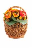 Flowers in pot on white background — Stock Photo