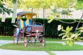 Stary koń przewóz — Zdjęcie stockowe