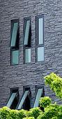 Windows on Black Building — Stock Photo
