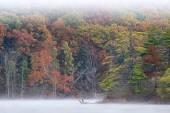 Autumn Hall Lake in Fog — Stock Photo