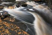 Sturgeon River Rapids — Stock Photo