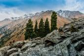Tien Shan Mountains — Stock Photo