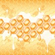 Honey honeycomb — Stock Vector #70042611