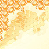 Plástev medu — Stock vektor