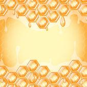 Plaster miodu — Wektor stockowy