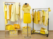 Dressing closet with yellow clothes arranged on hangers and a winter outfit on a mannequin. — Stock Photo