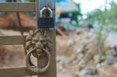 Metall lion head and lock — Stock Photo