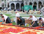 Flower Carpet on Grand Place, Brussels, Belgium — Stockfoto