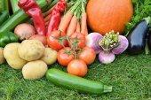 Verdure d'autunnale — Foto Stock