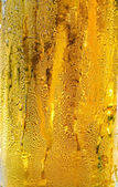 Condensation drops from cold beer — Stock Photo