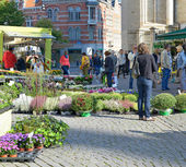 Traditional open air market in historical center of the city — Stock Photo