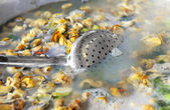 Boiling escargots — Fotografia Stock