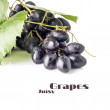 Grapes cluster with grapevine isolated on white background. Blue ripe grape with copyspace — Stock Photo #52930321