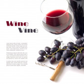 Red wine in wineglass with grapes isolated on white background. — Stock Photo