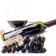 Bunch of blue grapes with bottle of red wine isolated on white background — Stock Photo #54369519