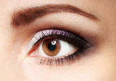 Female eye with long eyelashes close up image. Eyebrows with brown woman eye. — Foto Stock