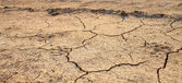 Cracked waterless ground. Natural disasters — Stock Photo
