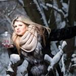 Winter fairy tale. — Stock Photo #63889171