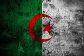 Grunge flag of Algeria with capital in Algiers — Stock Photo