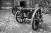 Canons in courtyard of castle — Stock Photo