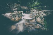 Vintage photo of an autumn forest and water stream — Stock Photo