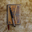 Aged ornamented diary with pen — Stock Photo #65887033