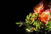 Amazing bouquet of roses on black lit by the sun — Stock Photo