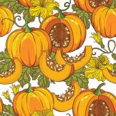 Pumpkins, flowers and leaves — Stock Vector