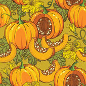 Botanical pattern with pumpkins — Stock Vector