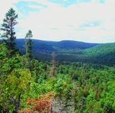 Moose berg over het hoofd op de zaagtand range - minnesota — Stockfoto