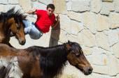 Man and horses — Stock Photo