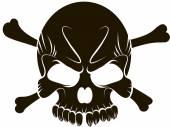 Skull on white background — Stock Vector