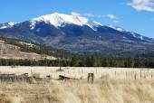 Sněhu limitován hory — Stock fotografie
