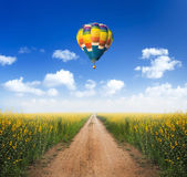 Hot air balloon over dirt road into yellow flower fields with cl — Stock Photo