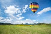 青い空を背景の黄色い花のフィールド上の熱い空気バルーン — ストック写真