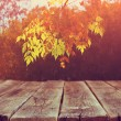 Image of front rustic wood boards and background of fall leaves in forest — Stock Photo #54221085