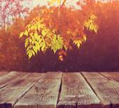 Image of front rustic wood boards and background of fall leaves in forest — Stock Photo