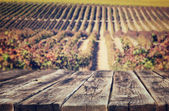 Wooden rustic boards in front of vineyard background in autumn. ready for product display. — Stock Photo