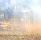 Abstract photo of light burst among trees and glitter bokeh lights. image is blurred and filtered . — Stock Photo