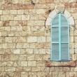Old house's wall from jerusalem stone and old blue iron shutters — Stock Photo #61956195