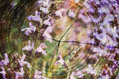 Double exposure of purple flowers and Cut tree trunk. nature background — Stock Photo