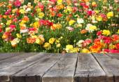 Wood board table in front of summer landscape of field with many flowers — Stock Photo