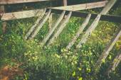 Image of broken wooden fence in field of flowers — Stock Photo