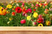 Wood board table in front of summer landscape with double exposure of flower field bloom — Stock Photo