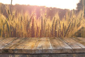 Wood board table in front of field of wheat on sunset light. Ready for product display montages — Stock Photo