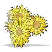 Blumen-Abbildung — Stockvektor