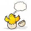 Hatching chick with thought bubble — Stock Vector #57798953