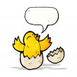 Cartoon chick hatching from egg — Stock Vector #57810509