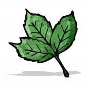 Leaf illustration — Stock Vector